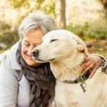 Pet_Therapy_North_Star_Senior_Advisors