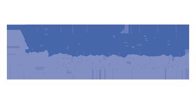 transparent bluestone logo